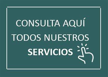 Conspor consultores